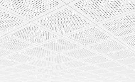 Installation plafond Paris 11